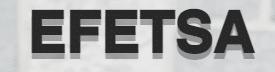 Efetsa logo